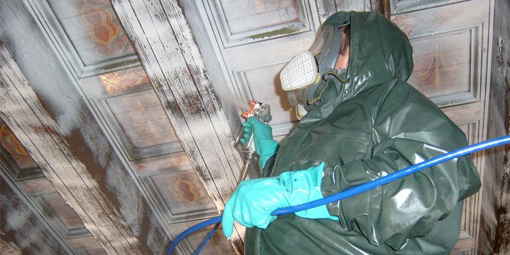 Tratamiento xilofagos cantabria eliminacion xilofagos - Tratamiento carcoma madera ...